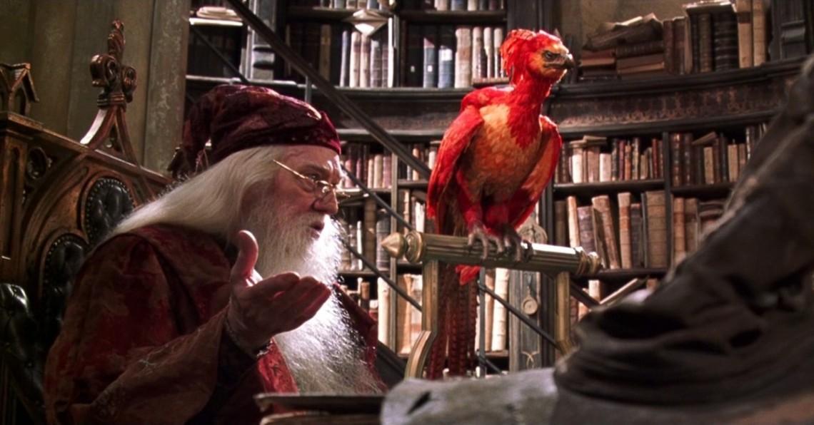 นกแดงในแฮรี่